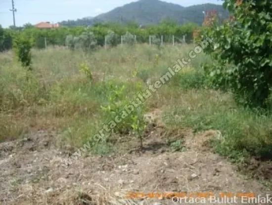Für Verkauf Freistehendes Haus Nahe Dem Zentrum Von Mugla In Oriya