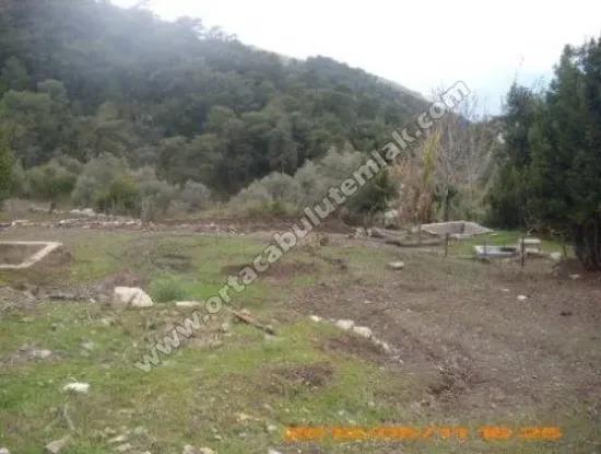 The Villa Gokbel Mugla Plot For Sale With A Sea View For Sale Sheep Oriya