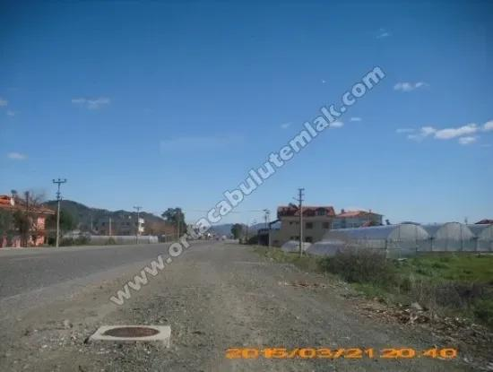 Muğla Highway Commercial Zero Position In Oriya, 5000 M2 Land For Sale