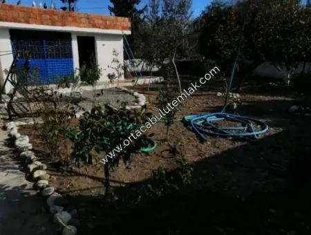 Muğla Ortaca Cumuriyet Mahalesin De Mustakil Köy Evi 516 M2 Arsa İçin De Satılık