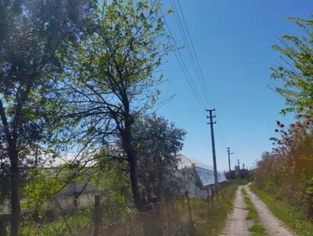 Muğla Ortaca  Yeşilyurt Mahallesin De  5500 M2 Arzi Satılık